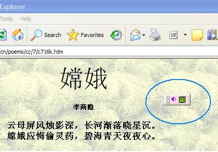Chinese Learning Software Support