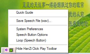 How to use Chinese Software